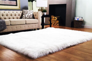 Shag Rug Can Make Your Room Looks Great